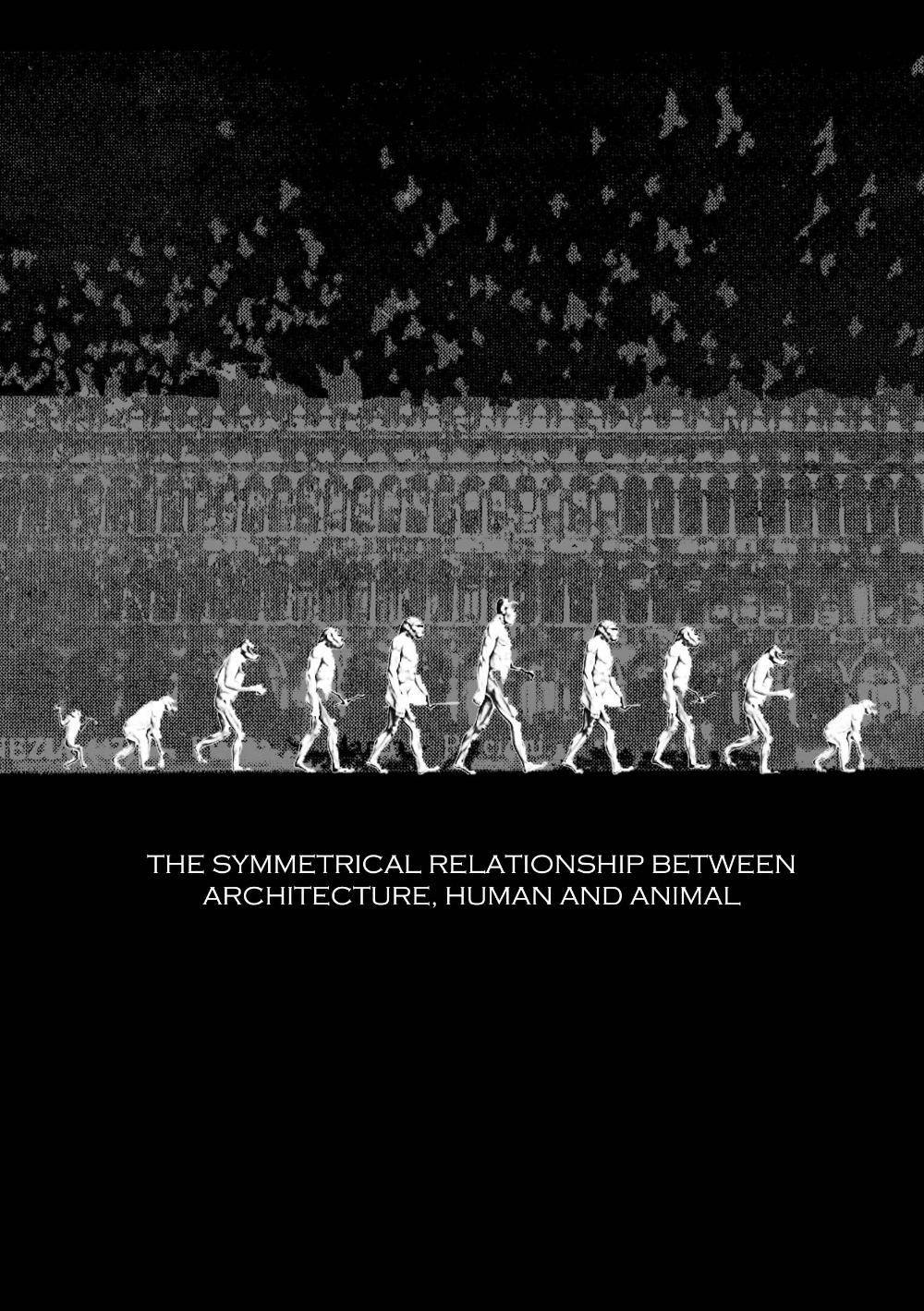 relationship between architecture and dance