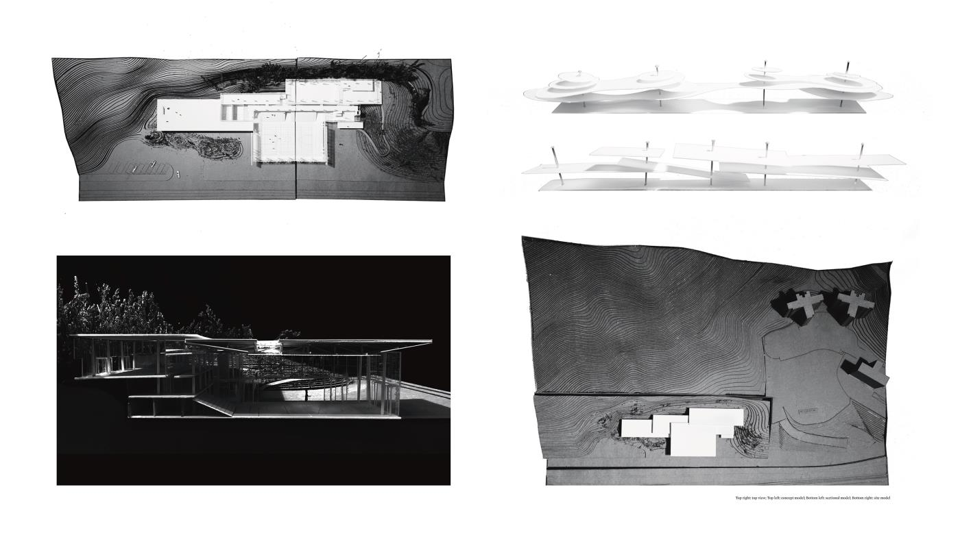 In-between Canopies –  Proposal for a Campus Sport Centre